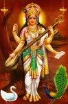 28-Saraswathy