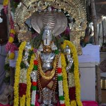 63-Prasanna Venkateswara Perumal - Pathamadai-Tirunelveli